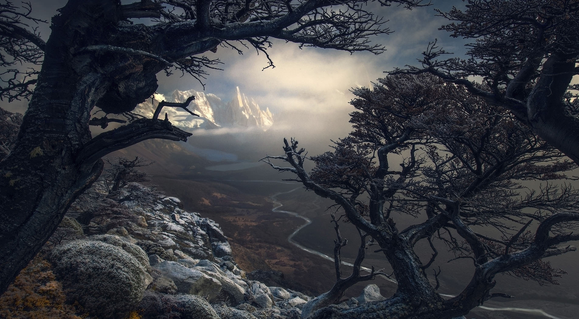 <img src=images/MidLogoW.png />